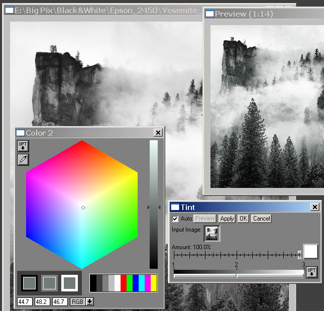 B&W workflow using the Tint transformation