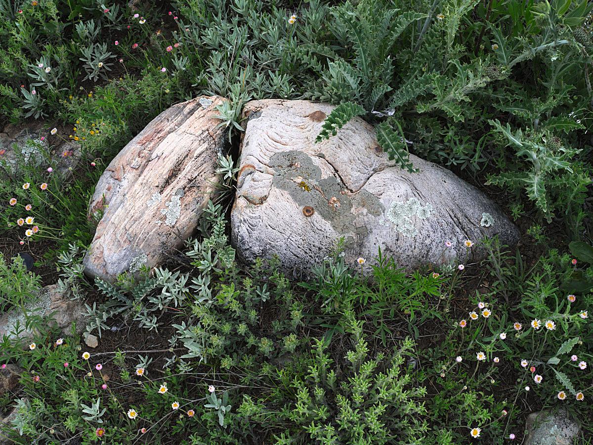 Twin_rocks_P1050268-1200W